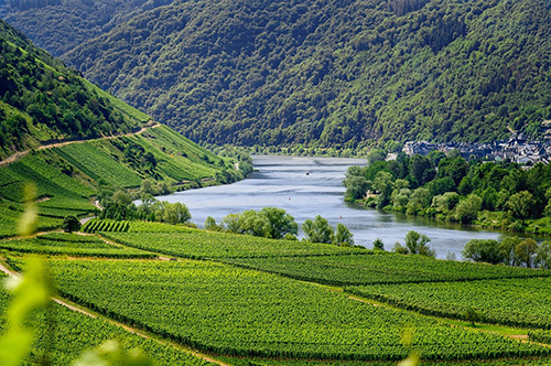 moselle-4336787_1280